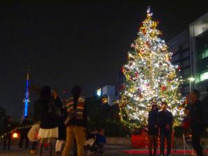 高さ10メートルのもみの木クリスマスツリー!